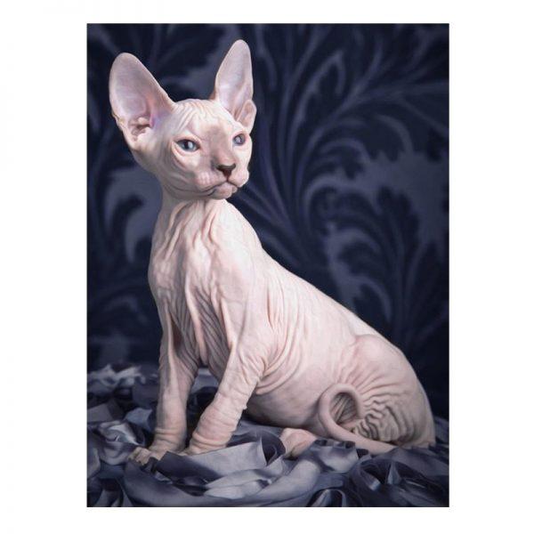 Modern Painting 30-40 Animal White Lovely Artistic