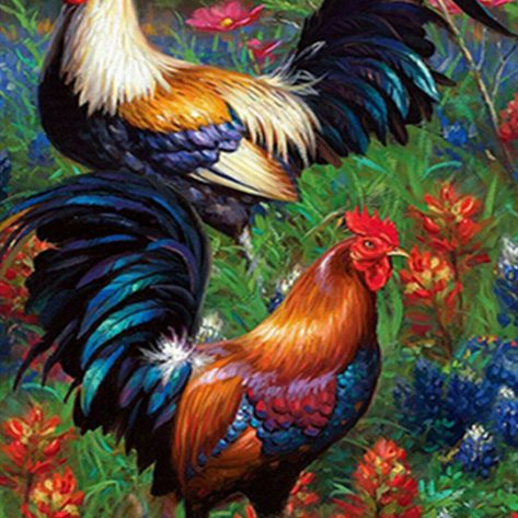 30-40-animal Chicken Beautiful Life
