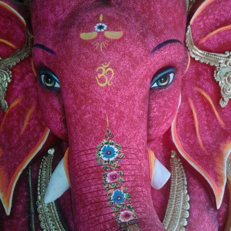 Animal Pink Elephant Lovely Auspicious
