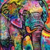Animal Lovely Graffiti Elephant Colorful
