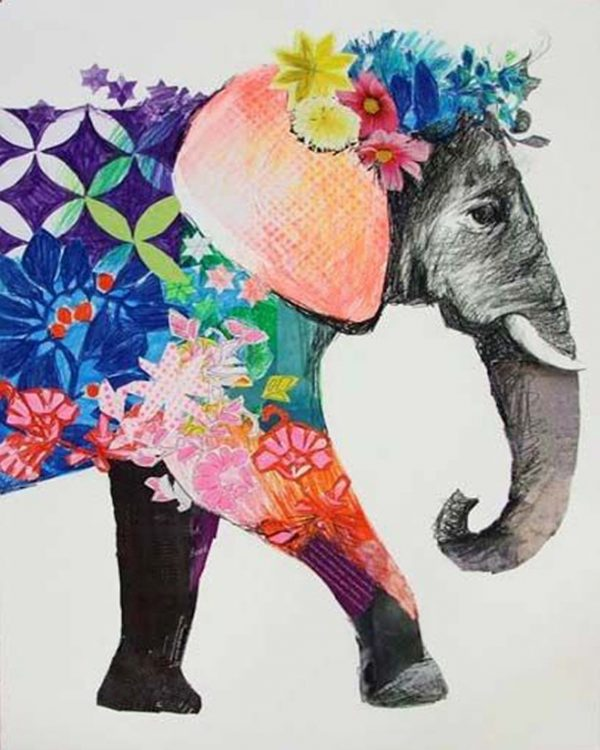 Animal Draw Clothes Elephant Lovely