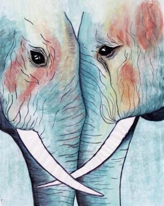 Animal Round Eyes Lovely Elephants Head Meet