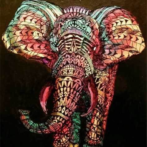 Animal Coloring Light Pretty Elephant