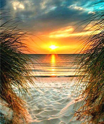 Scene Sunset And Beach Sky And Lake