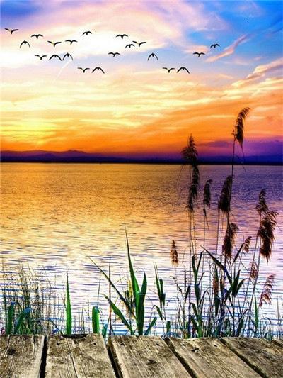 Scene Beautiful Sunset Water And Sky