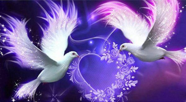 Lovebirds Sending Love