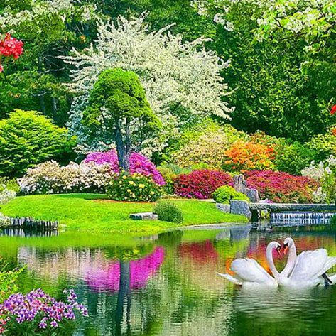 Spring Is Full Of Beautiful Pictures