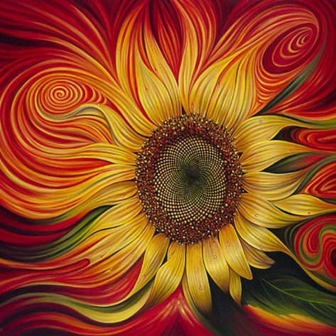 Ingeniously Conceived Colorful Sunflower