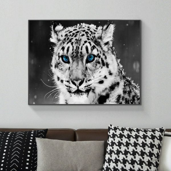 Black And White Leopard With Blue Eyes In Winter