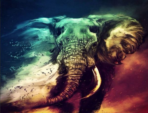 Elephant Walking In The Sand