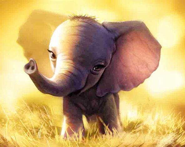 Baby Elephant Cub Walking In The Lawn