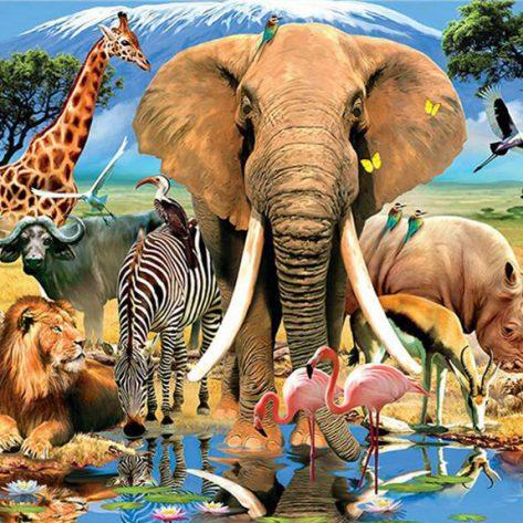 Harmonious Ecological Scene In Nature