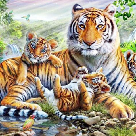 Mother Tiger And Little Tiger By The Stream