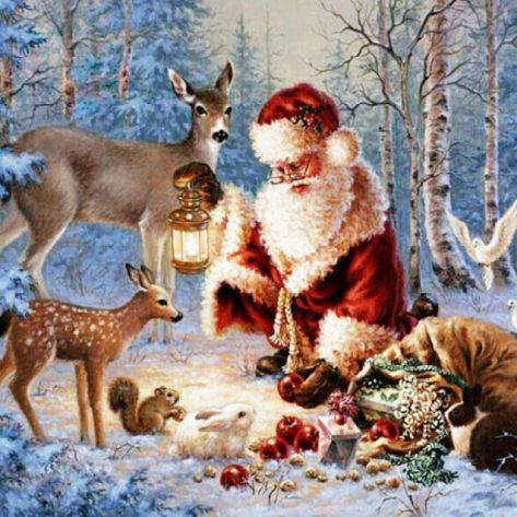 Santa Claus Shares Food With Small Animals In The Forest